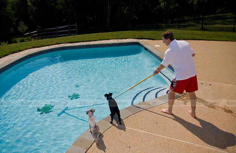 Ứng dụng Chổi cọ bể bơi Midas