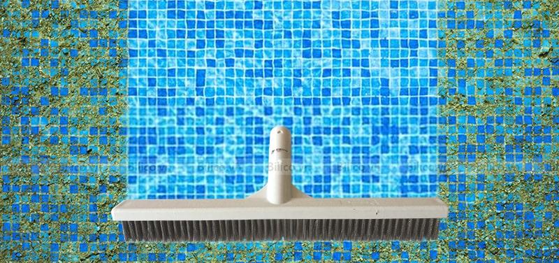 Mặt chổi cọ vệ sinh bể bơi Emaux dài 40cm
