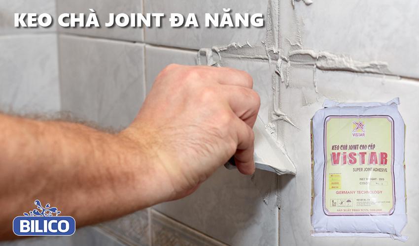 Keo chà mạch đa năng Joint Vistar