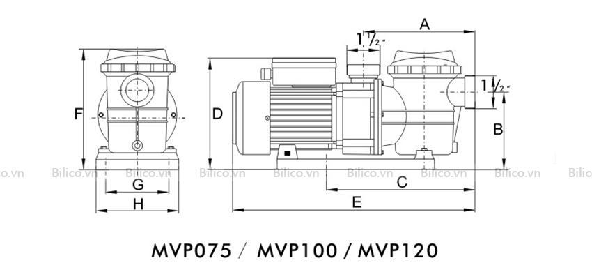 Kích thước máy bơm bể bơi MVP100