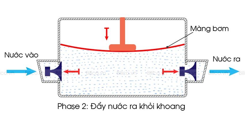 Nguyên lý hoạt động máy bơm màng ranking FL40
