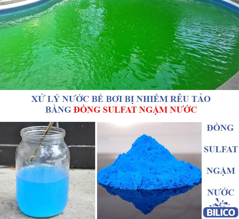 Rải hóa chất đồng sulfat vào hồ bơi
