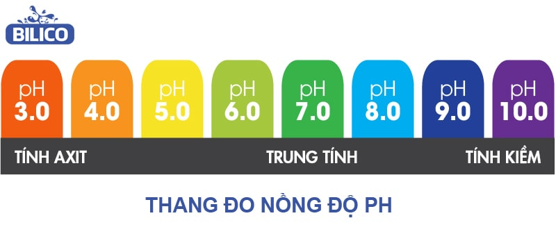 Nồng độ pH trong nước bể bơi đạt chuẩn là từ 7.2 - 7.6