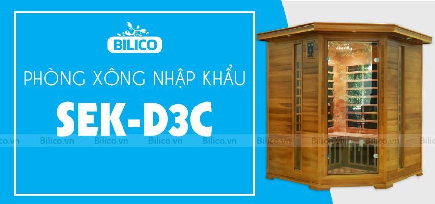 Phòng xông hơi nhập khẩu SEK-D3C