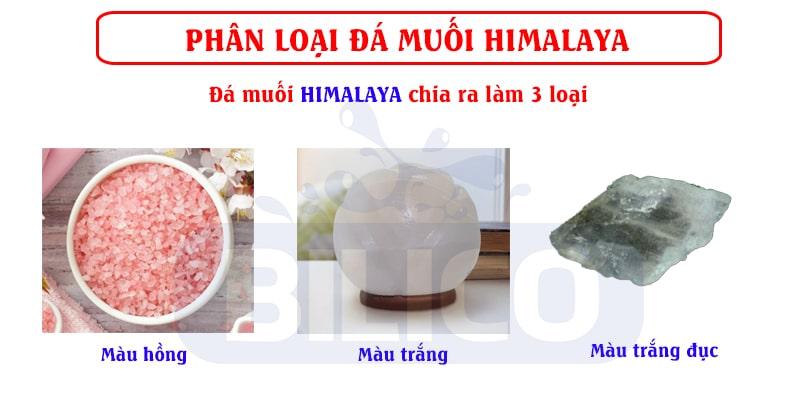 phân loại đá muối himalaya