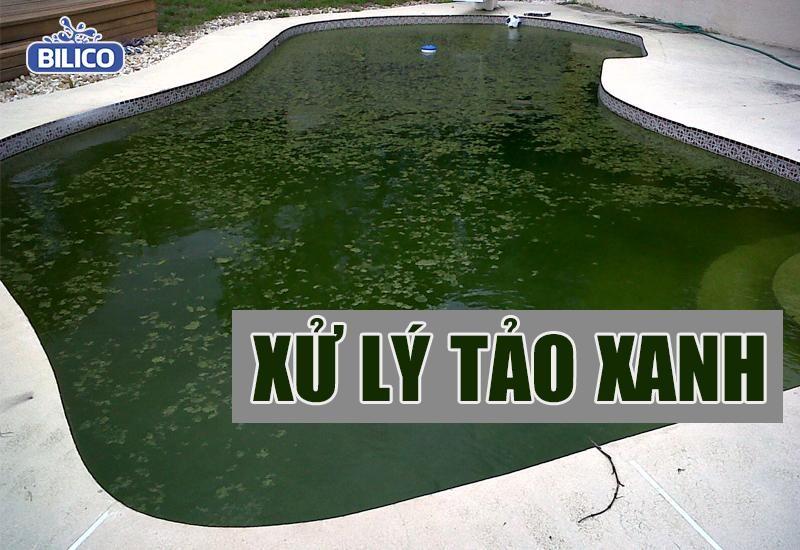 cách xử lý tảo xanh