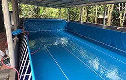 bể bơi bạt kích thước 9.6 x 21.6 (m)